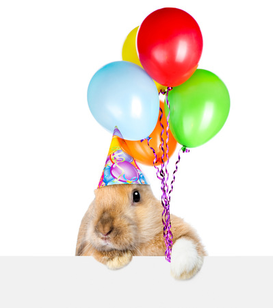 placard: Rabbit in birthday hat looking over a signboard. Isolated on white background. Stock Photo