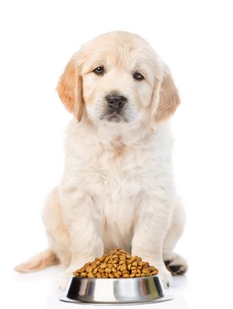 Chiot golden retriever nourriture