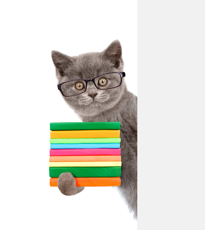 books library: Cat wearing glasses holding books and peeking from behind empty board. isolated on white background. Stock Photo