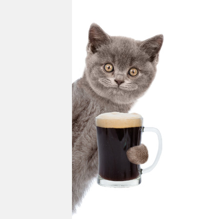 Happy cat holding beer peeking from behind empty board. isolated on white background.