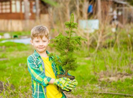 kids outside: Boy holding a tree seedling in hands.