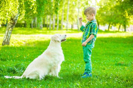 Boy training dog on green grass.