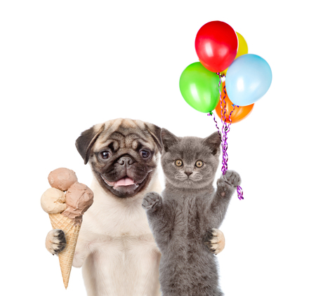 carlin: Cat and Dog holding balloons and ice cream. isolated on white background.
