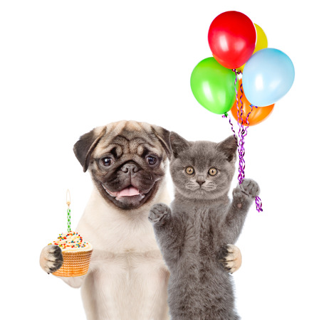 carlin: Cat and Dog holding balloons and cake. isolated on white background.
