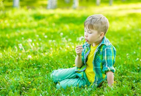 blowing dandelion: Boy blowing dandelion on green grass.
