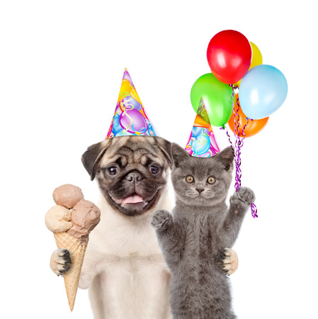 carlin: Cat and Dog in birthday hats holding balloons and ice cream. isolated on white background.