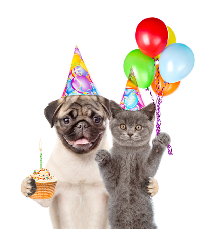 carlin: Cat and Dog in birthday hats holding balloons and cake. isolated on white background. Stock Photo