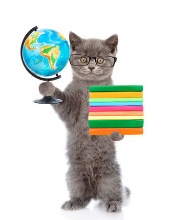 hind: Cat in eyeglasses standing on hind legs and holding books and globe. isolated on white background.