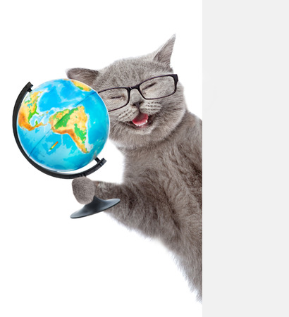 Happy cat in glasses holding globe and peeking from behind empty board. isolated on white background.