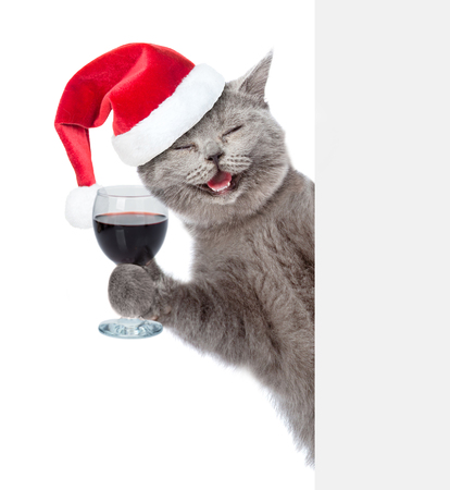 Happy cat in a hat holding a glass of wine and peeking from behind empty board. isolated on white background.