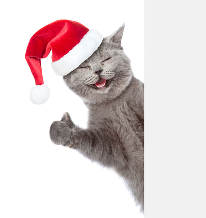 Happy cat in red christmas hat peeking from behind empty board and showing thumbs up. isolated on white background. Banco de Imagens