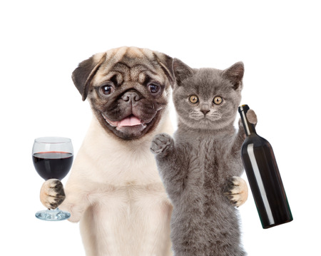 Puppy and kitten holding a bottle of red wine and wineglass. isolated on white background.