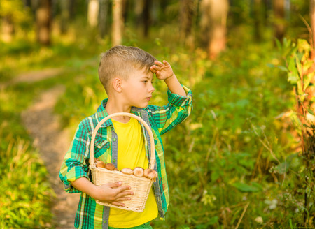 Boy with mushroom searches for the road in the forest.