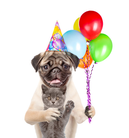 carlin: Cat and Dog in party hat holding balloons. isolated on white background.