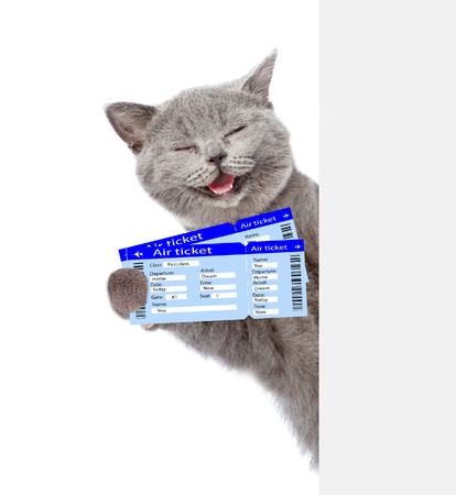 Funny cat holding airline tickets. isolated on white background.