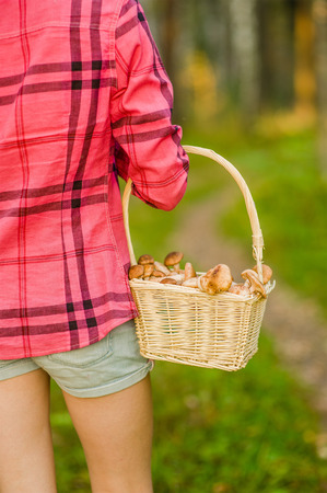 Girl with a basket of mushrooms. back view. Stock Photo