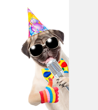 Dog in birthday hat holds retro microphone and peeking from behind empty board. isolated on white background.