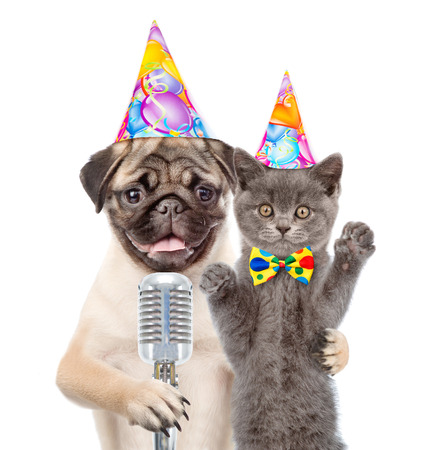 Kitten and Puppy in birthday hats singing with microphone a karaoke song. isolated on white background.