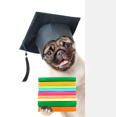 graduated: Graduated dog with books peeking from behind empty board. isolated on white background.