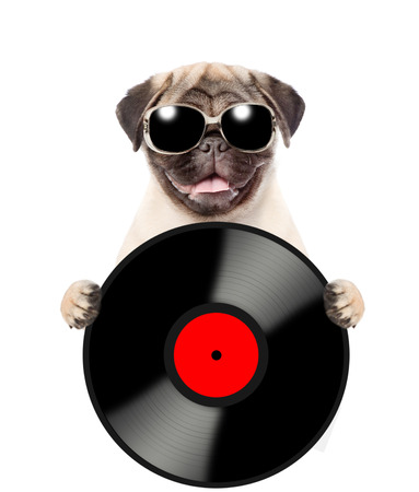 broadcast: Dog with sunglasses holds a vinyl record and retro microphone . Isolated on white background. Stock Photo