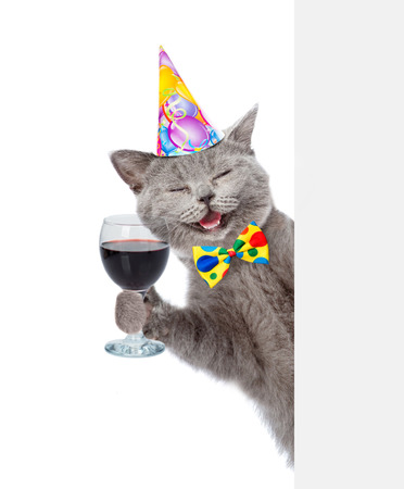 Happy cat in birthday hat holding wineglass. isolated on white background.