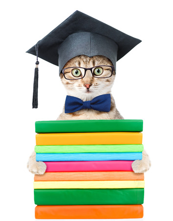 Kitten with black graduation hat holding books. isolated on white background.