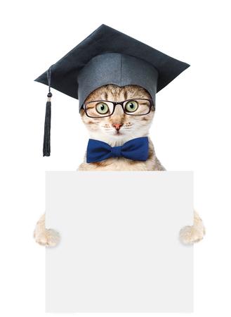 graduated: Graduated cat holding empty board. isolated on white background. Stock Photo