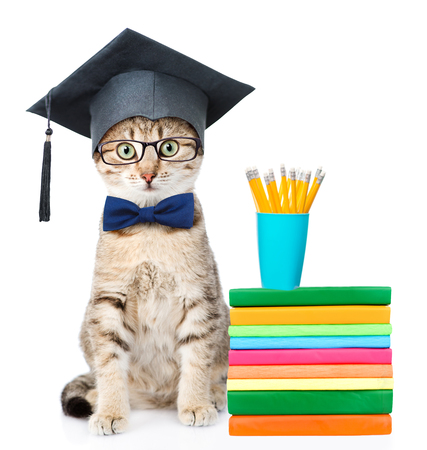 paw smart: Graduated cat with books. isolated on white background.