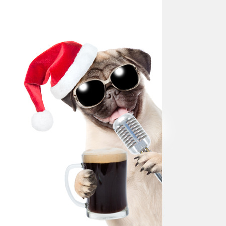 Pug puppy with beer and retro microphone in red christmas hat peeking from behind empty board. isolated on white background.