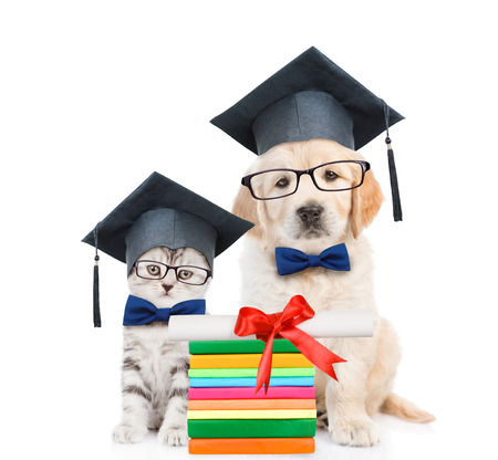 egresado: Cat and Golden retriever puppy with black graduation hats and eyeglasses sitting together. isolated on white background.