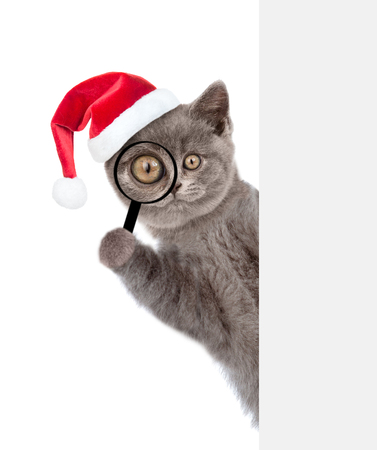 thru: Christmas cat in red hat looks thru a magnifying lens. Isolated on white background.