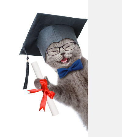 Happy graduated cat with diploma peeking from behind empty board. isolated on white background.