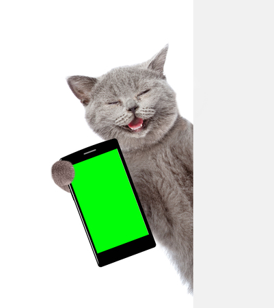 Happy cat with smartphone peeking from behind empty board. Isolated on white background. Standard-Bild
