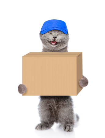 Happy cat delivering a big package. isolated on white background.