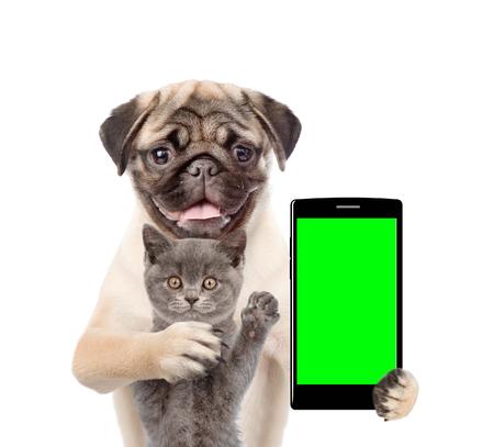 Kat en hond met smartphone. Geïsoleerd op witte achtergrond Stockfoto
