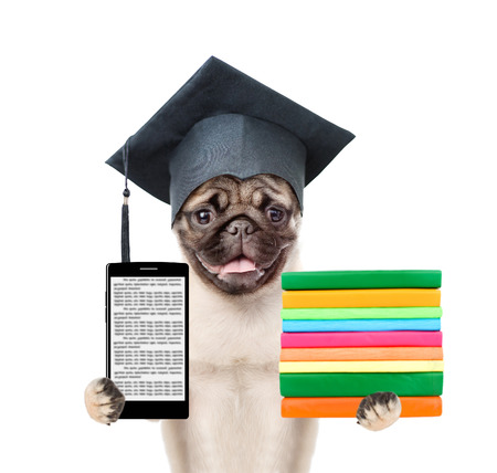 Graduated dog with books and smartphone. isolated on white background.