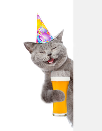 Happy Cat in birthday hat with light beer peeking above white banner. isolated on white background.