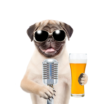 Funny puppy in sunglasses holding light beer and retro microphone. isolated on white background.