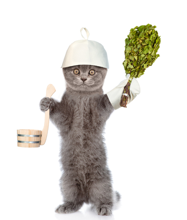 finnish bath: Funny cat holding birch broom and ladle. isolated on white background. Stock Photo