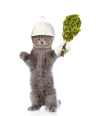 finnish bath: Funny cat in the hat for a bath holding a birch broom. isolated on white background.