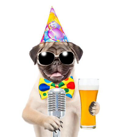 Funny puppy in birthday hat and sunglasses holding light beer and retro microphone. isolated on white background.