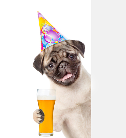 Happy Dog in birthday hat lwith light beer peeking above white banner. isolated on white background