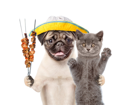 Kitten and puppy in summer hat with grilled meat on skewer. isolated on white background.