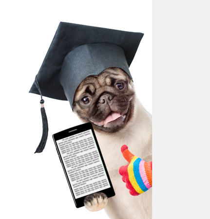 graduated: Dog with black graduation hat and with smartphone peeking behind white banner and showing thumbs up. isolated on white background.