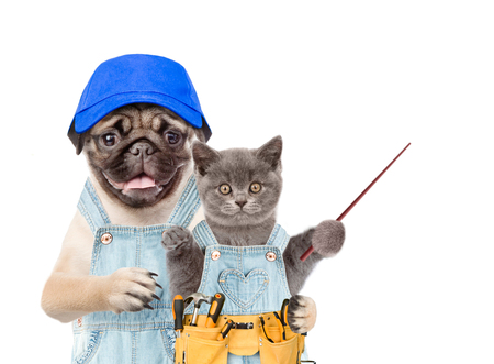 Dog worker with hat and kitten with tool belt and pointing stick. Isolated on white background.