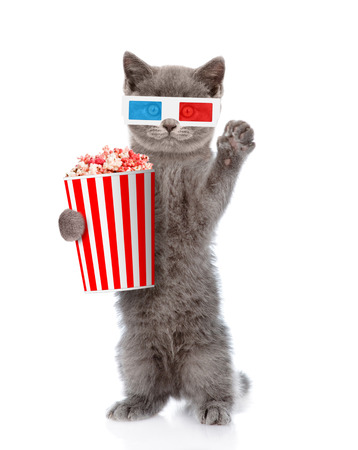 Funny kitten in the 3d glasses with popcorn. isolated on white background.