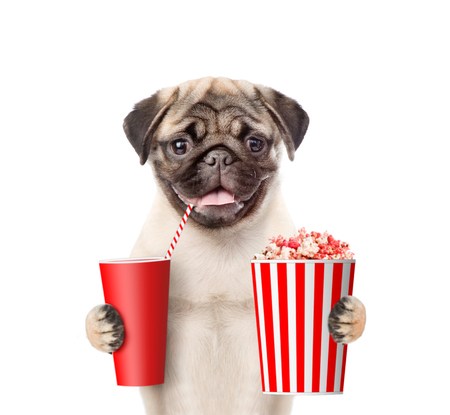 Funny puppy with popcorn and cola. isolated on white background.