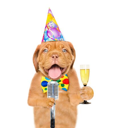 Dog in party hat holding retro microphone and champagne. Isolated on white background.
