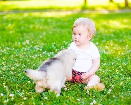 Baby girl sitting on the grass with puppy in the summer park.