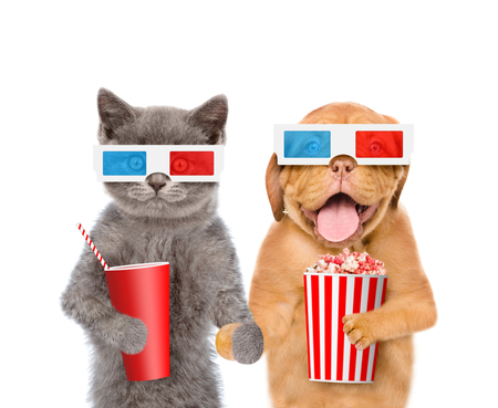 Funny puppy and kitten in the 3d glasses with popcorn basket and cola. isolated on white background.